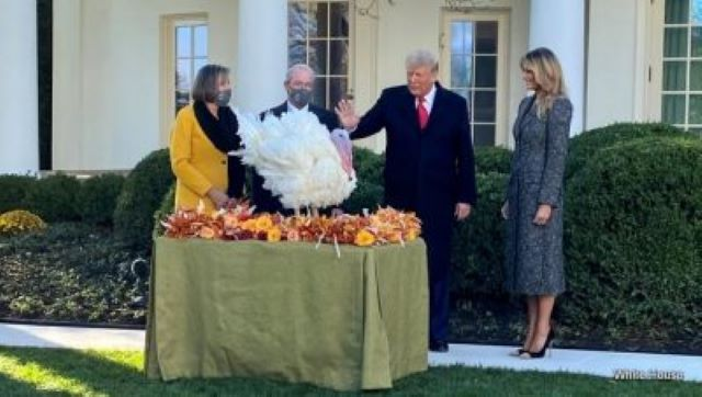 President Trump at the National Thanksgiving Turkey Pardoning Ceremony